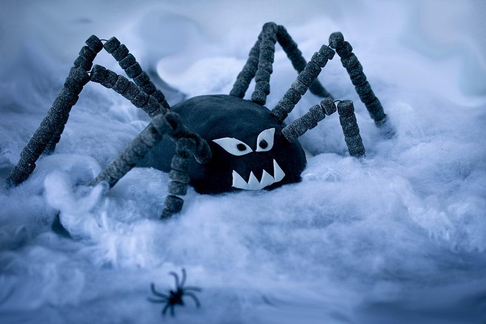 Rezept Spinnen-Kuchen für die vegane Kinder Halloween-Party